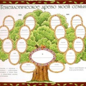 003 Генеалогическое дерево