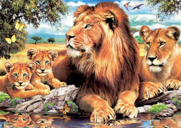 002 Животные