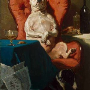 007 De Dreux Alfred - Pug Dog in an Armchair