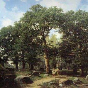 006 Дюккер, Е Э.Дубовый лес в окрестностях Ревеля