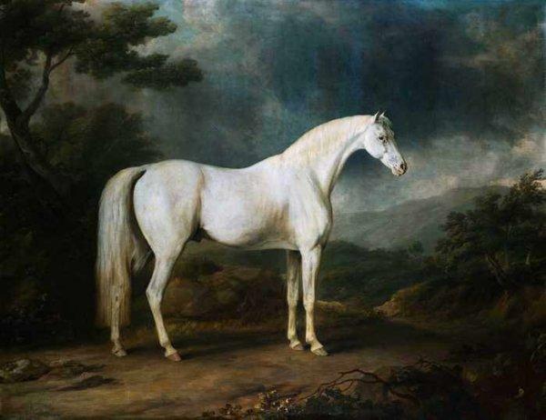 009 Джилпин, С. Лошадь