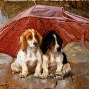 013 Неизвестный автор. Шенки под зонтом