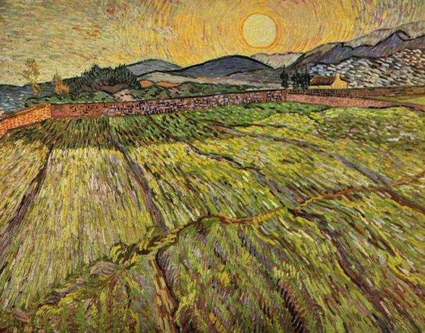011 Ван Гог, Пейзаж с вспаханными полями