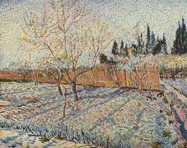 013 Ван Гог, Плодовый сад с кипарисами