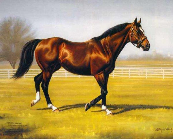 023 Лошадь