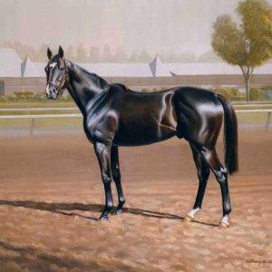 024 Лошадь