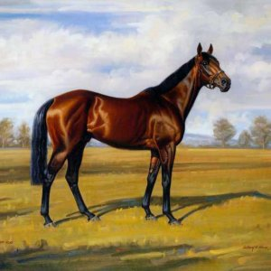026 Лошадь