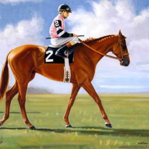 029 Affirmed Cauthen Up