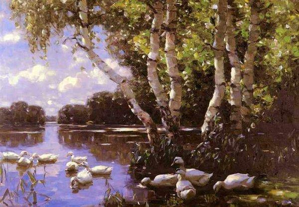 264 Koester Alexander Elf Enten Unter Birken Und Im Wasser