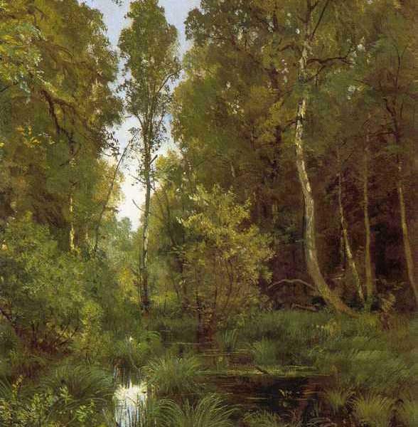 277 Шишкин, И И.Заросший пруд у опушки леса. Сиверская