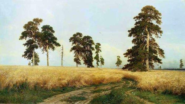 284 Шишкин, И.И. Рожь