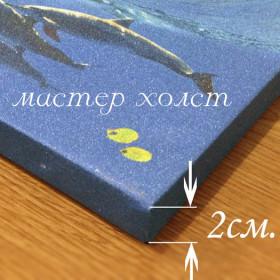 Галерная 2 см