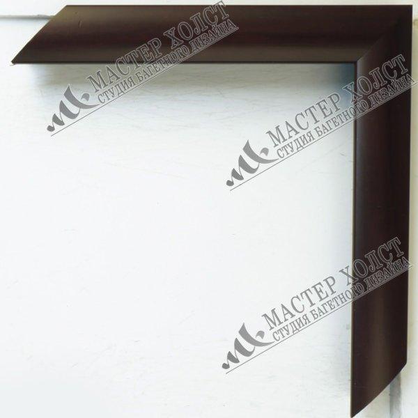 Пластиковый багет для картин EF-106   220
