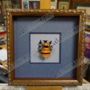 Пчела в раме
