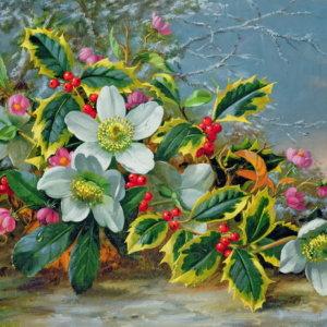 Зимние розы в ландшафте - Альберт Вильямс
