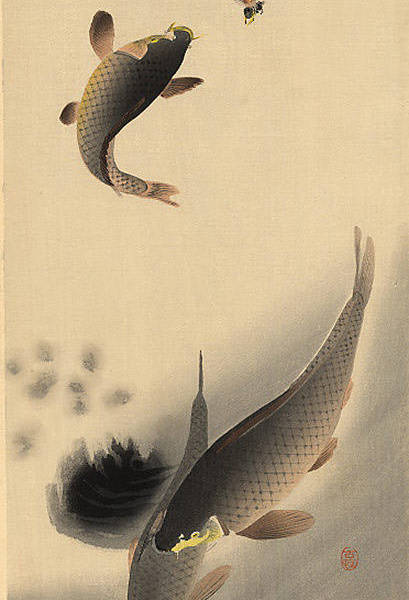 koson-ohara-35