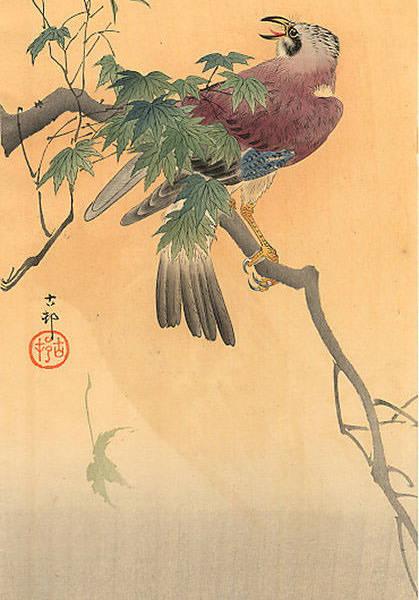 koson-ohara-81