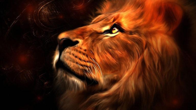 003 Львы
